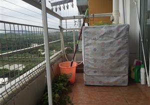 东南向两房 厅出阳台 看香港山 光线好有钥匙看房