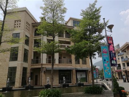 八十步海寓-环境绿化