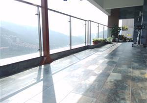 前海自贸区,依云半山,大阳台,采光好,景观无敌,低于市场价