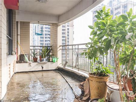 圣淘沙正规4房,送入户,可做五房,通透前后双阳台